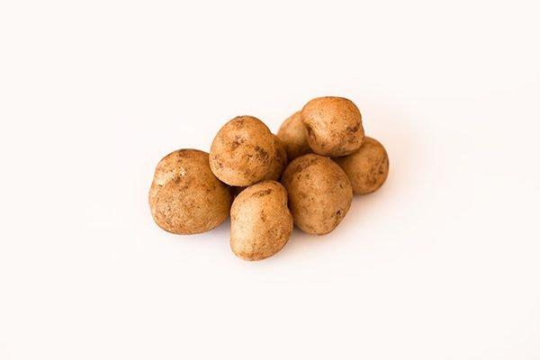 Atlantic Seed Potato