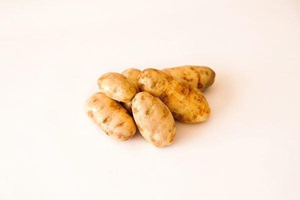 Russet Burbank Potato