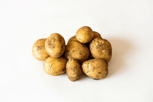 Nicola Seed Potatoes