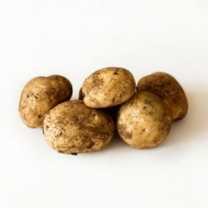 Sebago Seed Potatoes