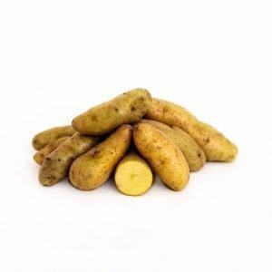 La Ratte Seed Potatoes