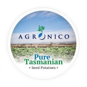 Agronico Certified Seed Potatoes for Sale