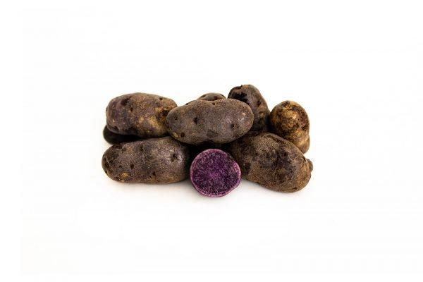 Purple Sapphire Seed Potatoes